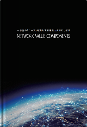 Network Value Components